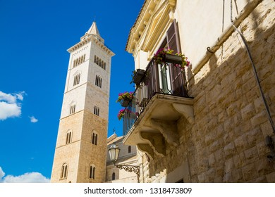 Cathedral tower in the town of Trani, province Bari, region Puglia, Italy