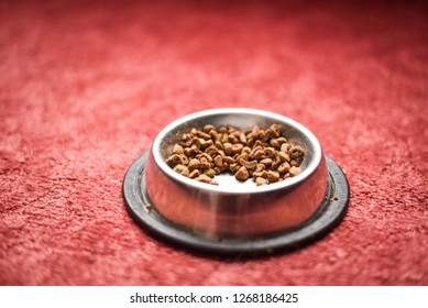 Cats and dogs food. Free space for text