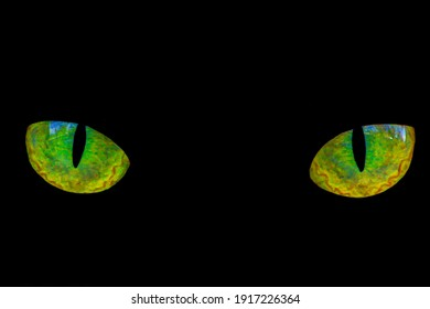 Cats eyes yellow and green