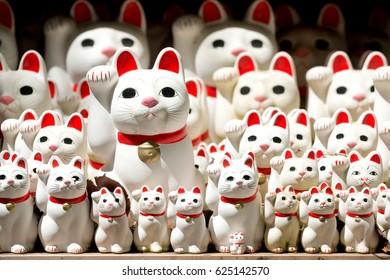 Cats of Gotokuji Temple, Tokyo, Japan