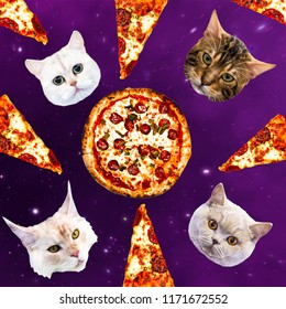 Cats in space pizza. Contemporary minimal collage. Funny Fast food art project