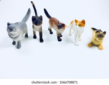 Cats toys animals