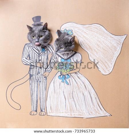 Cat in Wedding Dress