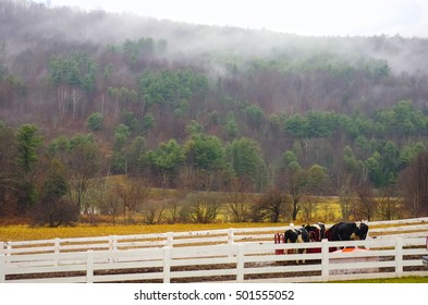 Catskills Farm Landscape with mist. Delhi, New York.