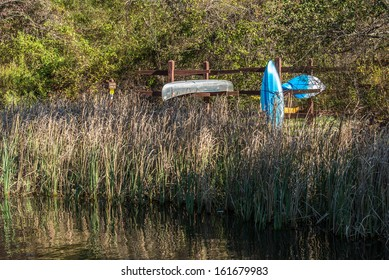 Cattails shoreline with canoe and kayak rack