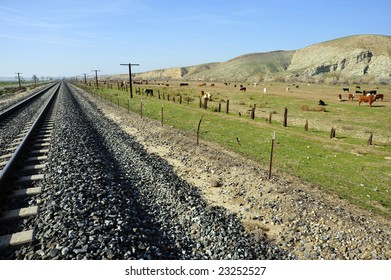 Cattle feed lot between railroad tracks and San Joaquin Valley (California) foothills