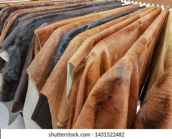 Cattle hides, showcase in the store