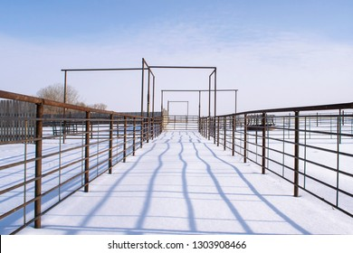 Cattle pens at Pierce Ranch in Montana in mid-January