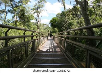 Catwalk nature trail at the Argentina side of Iguazu Falls