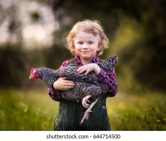 Caucasian baby boy posing with hen. Happy child on farm.