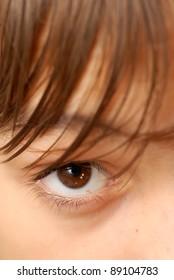 caucasian boy's brown eye
