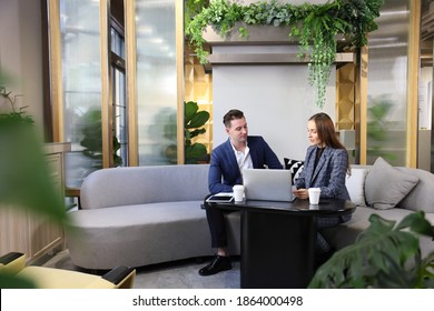 Caucasian business people is working on new strategic planning for next year using laptop while working in green eco friendly modern working space surrounded by air purifying house plant
