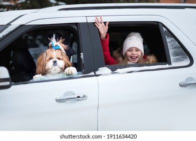 Caucasian child wearing a dog Take a car to go on vacation with family. Cute little kid look at view beside window