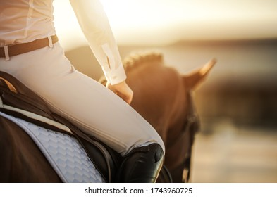 Caucasian Female Horse Rider in Equestrian Facility. Recreational and Sport Horse Riding Theme.
