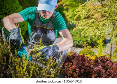 Caucasian Gardener in His 30s Working in a Garden. Trimming Plants Using Electric Cordless Trimmer.