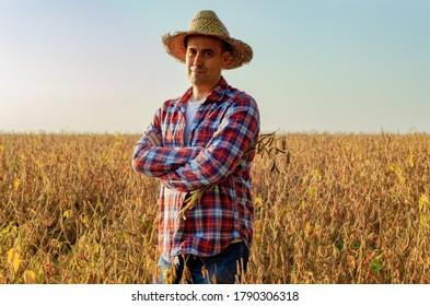 Paysan du Caucase d'âge moyen en chapeau de paille tenant sur le champ de soja aux armes croisées