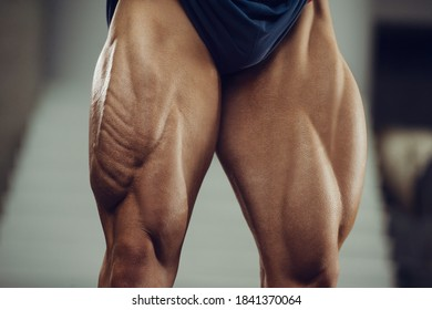 Caucasian power athletic man training pumping up leg quadriceps muscles. Strong bodybuilder with six pack, perfect abs, triceps, chest, shoulders in gym. Fitness and bodybuilding concept