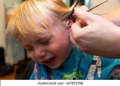 Caucasian Toddler boy Sits And Cries While He Gets His Hair Cut
