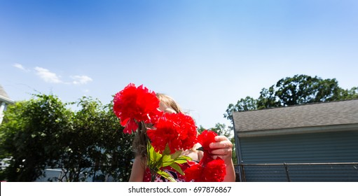 Caucasian Toddler Brown Haired Girl Plays With Some Red Carnation Flowers During A Summer Day In Her Back Yard