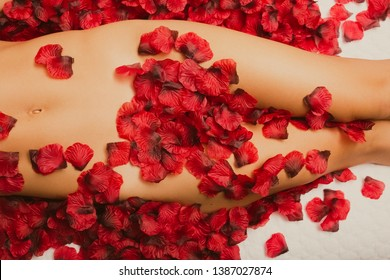 Caucasian woman's hips, thighs, and stomach covered by rose petals on a bed