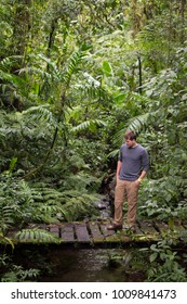 Caucasian young man contemplating nature in Monteverde, Costa Rica