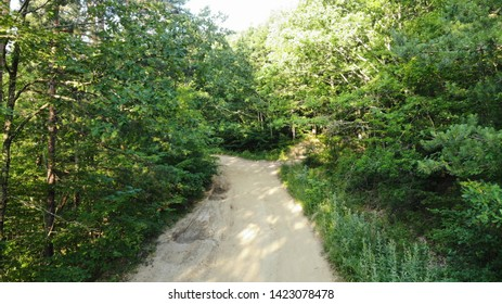 Caucasus forest on sunrise. Trails in the forest. Beautiful caucasus forest.