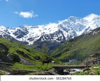 The Caucasus Mountains
