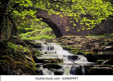 Cauldron Falls, West Burton, Yorkshire Dales