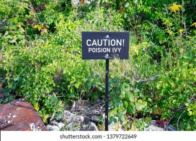 Caution poison ivy sign