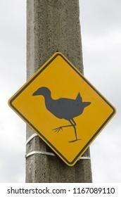 Caution signal by the pukeko (Porphyrio melanotus) presence. Kaikorai Lagoon. Otago. South Island. New Zealand.