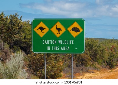 Caution wildlife sign in West Australia next to the road - danger of kangaroos emus and mammals