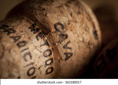 A Cava cork in a warm, moody setting. Cava metod traicion is printed on the cork to prove it's a quality product.