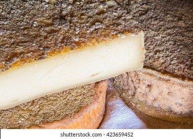cave cheese / cured cheese / father cheese