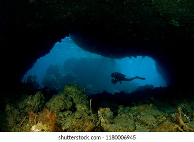 Cave diving with a colorful reef