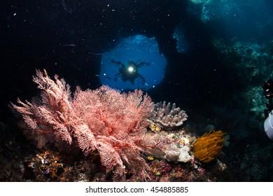 Cave Diving in Raja Ampat ; West Papua