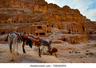 Cave dwellings at Petra