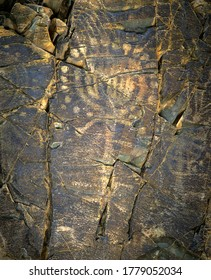 Cave paintings Petroglyphs of the petroglyph of the archaeological landscape of the Tamgaly tract