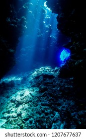 Caves of Paradise reef at the Red Sea
