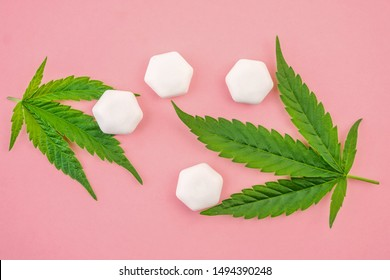 CBD Cannabis chewing gums and hemp leafs on pink background