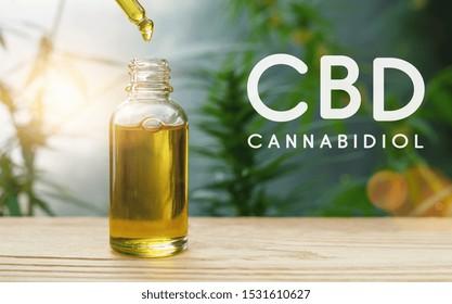 CBD Tropfen Dosierung einer biologischen und ökologischen Hanf Pflanze pflanzliche pharmazeutische cbd Öl aus einem Glas. Konzept der pflanzlichen Alternativmedizin, Kabelöl, Pharmaindustrie