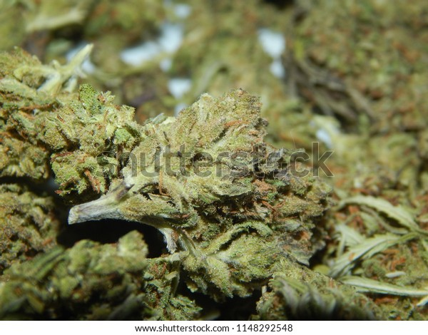 Cbd Hemp Flower Stock Photo (Edit Now) 1148292548