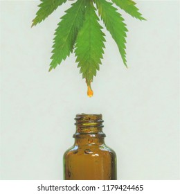 CBD oil (cannabidiol) drips off a marijuana (cannabis sativa, hemp) leaf into a brown glass bottle with a white background.