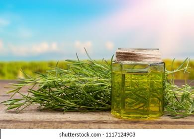 CBD oil hemp products