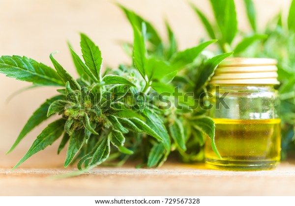CBD oil hemp products