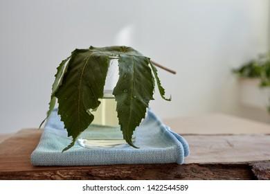 CBD oil hemp products cannabis
