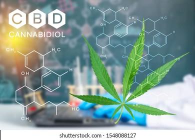 CBD Structural Formula, Cannabis Industry, Growing Marijuana, Pharmacy Business, CBD Elements and THC in Marijuana, Marijuana and Medical Marijuana Health