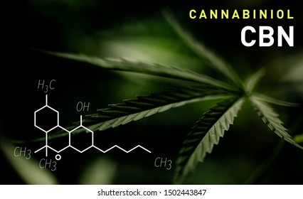 CBN molecular formula. Cannabinol molecule structure on green background.