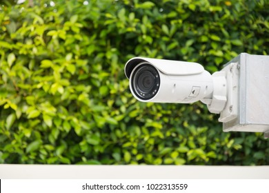 CCTV camera recording on the tree background.