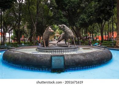 CDMX, MEXICO - Sep 05, 2021: A closeup of the Coyotes fountain in the center of a garden in Mexico