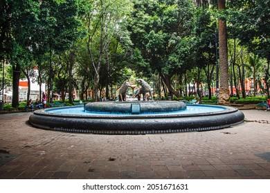 CDMX, MEXICO - Sep 05, 2021: The Coyotes fountain in the center of a picturesque garden, CDMX, Mexico